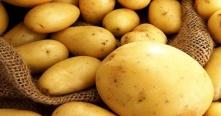 وزارة الاقتصاد تدرس إمكانية استيراد 5000 طن بطاطا