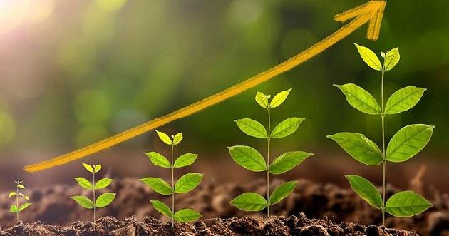 الهلال للمشاريع تلتزم بخطة التنمية المستدامة