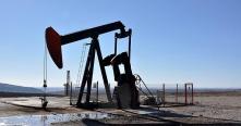 الشركة السورية المصرية للخدمات النفطية ترفع رأسمالها إلى 75 مليون ليرة