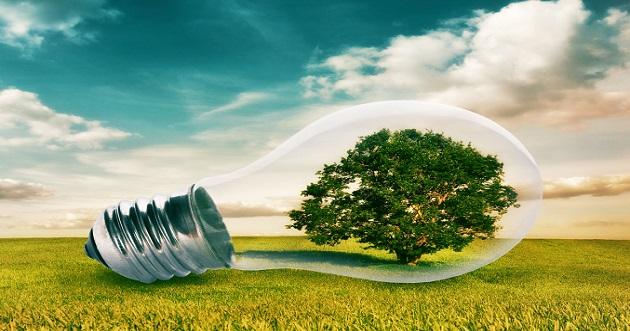 التزام قطاع الأعمال: التنمية المستدامة تتطلّب التفاؤل والعمل