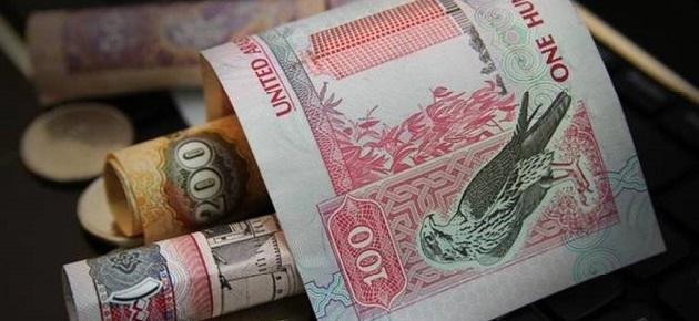 الإمارات تستثمر أكثر من 5 تريليون درهم في أسواق خارجية