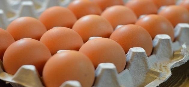 أسعار البيض تستقر على ارتفاع في نشرة تموين دمشق