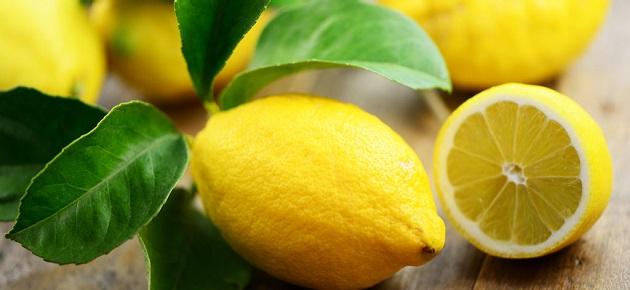 تجار سوق الهال بدمشق: الليمون المهرب من لبنان خفض الأسعار